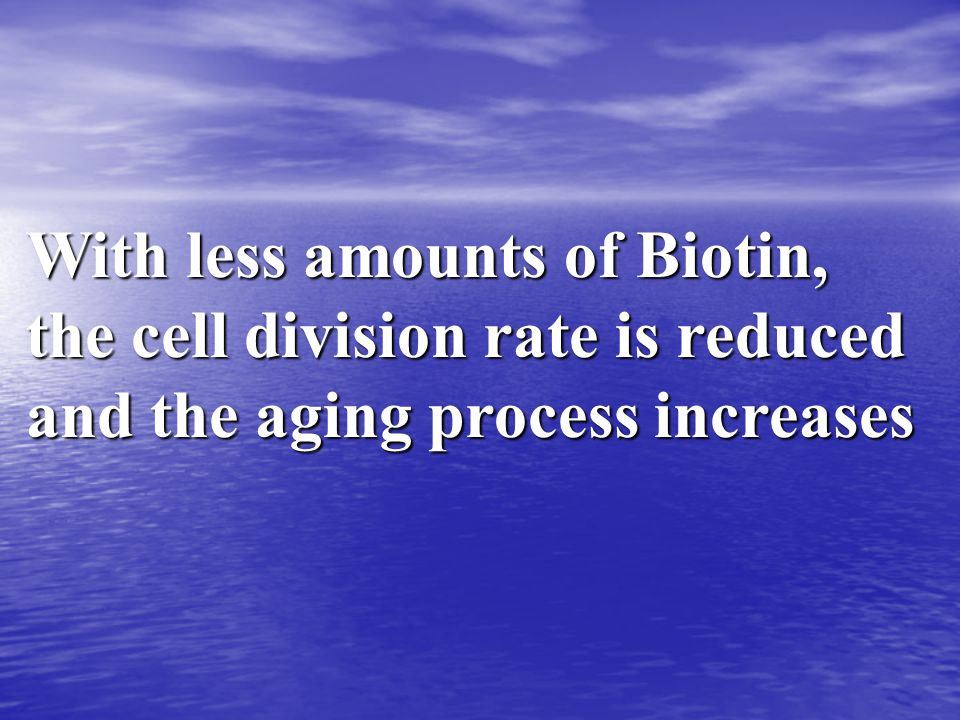 With less amounts of Biotin, the cell division rate is reduced and the aging process increases