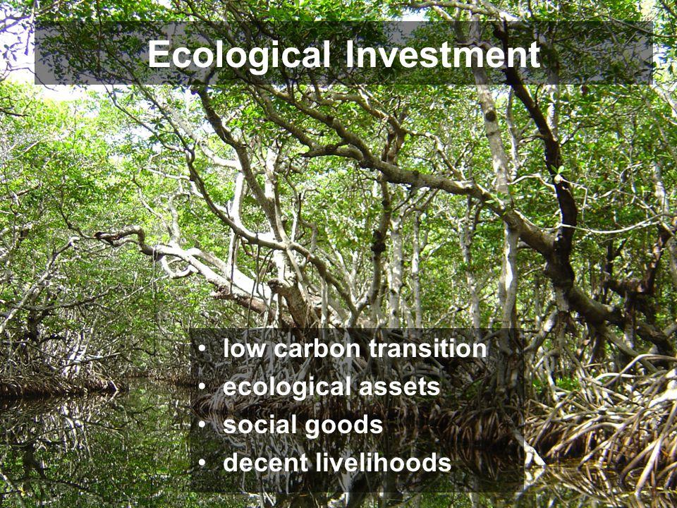 Ecological Investment low carbon transition ecological assets social goods decent livelihoods