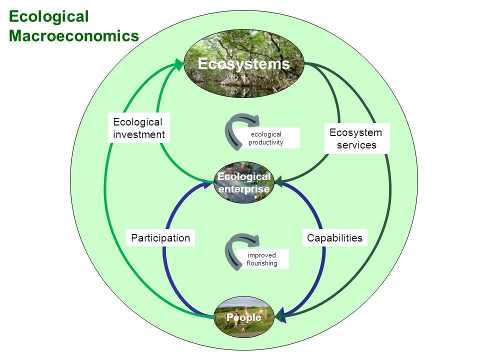 Ecological enterprise People Ecosystems Ecological investment Ecosystem services ParticipationCapabilities ecological productivity improved flourishin