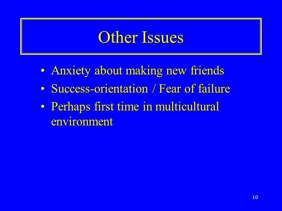 10 Other Issues Anxiety about making new friendsAnxiety about making new friends Success-orientation / Fear of failureSuccess-orientation / Fear of failure Perhaps first time in multicultural environmentPerhaps first time in multicultural environment