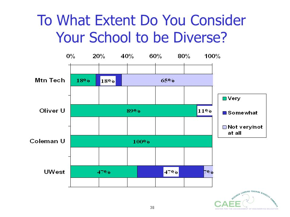 38 To What Extent Do You Consider Your School to be Diverse?
