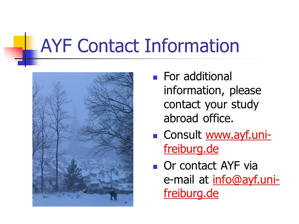 AYF Contact Information For additional information, please contact your study abroad office.