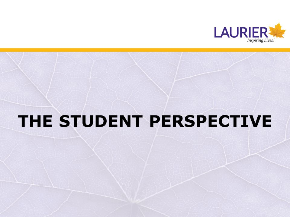 THE STUDENT PERSPECTIVE
