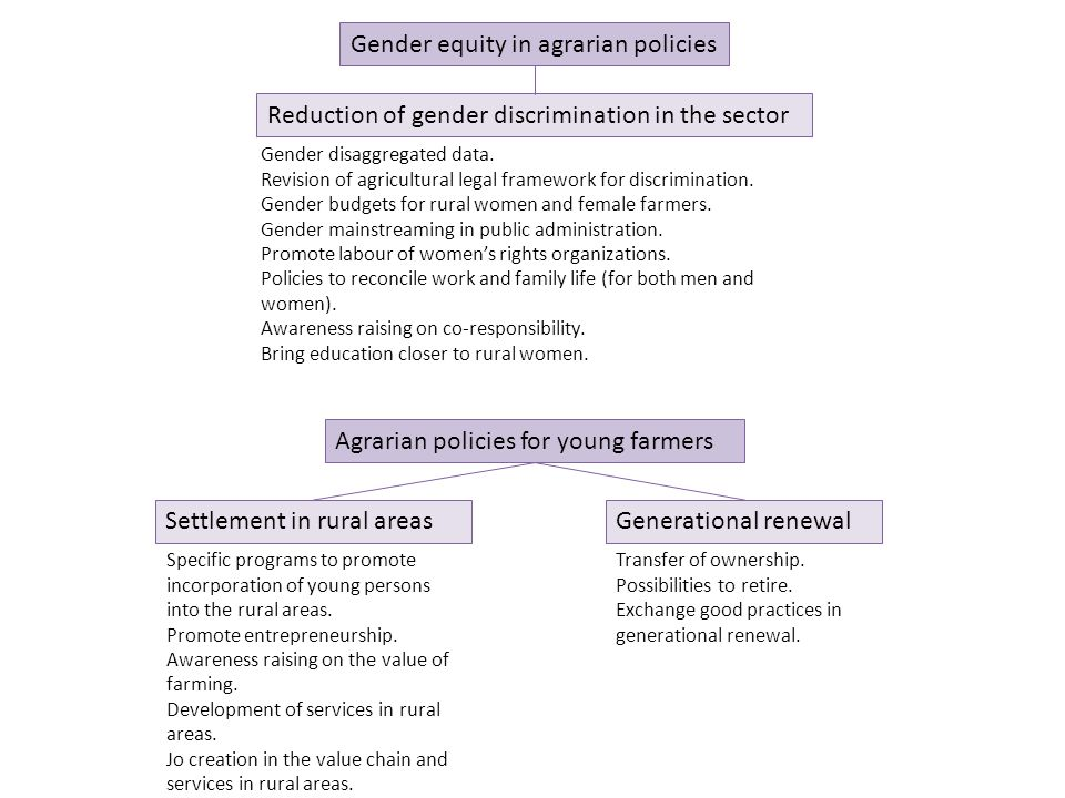 Agrarian policies for young farmers Gender equity in agrarian policies Reduction of gender discrimination in the sector Gender disaggregated data.