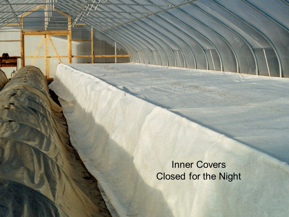 Inner Covers Closed for the Night