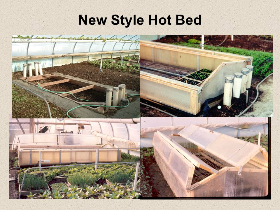 New Style Hot Bed