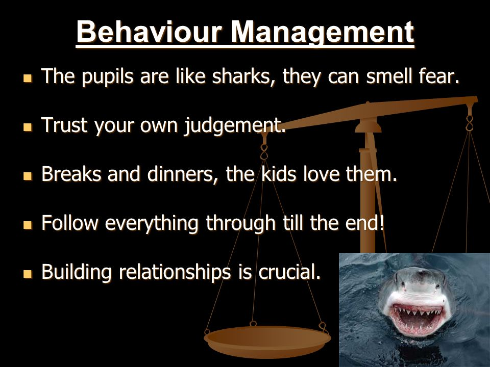 Behaviour Management The pupils are like sharks, they can smell fear.
