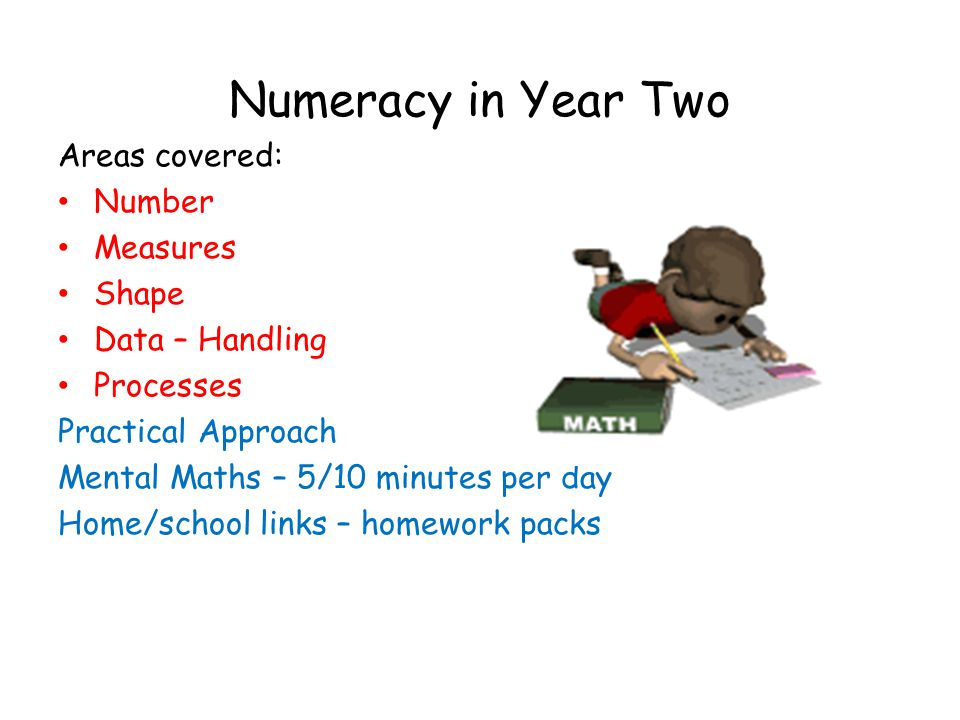 Numeracy in Year Two Areas covered: Number Measures Shape Data – Handling Processes Practical Approach Mental Maths – 5/10 minutes per day Home/school