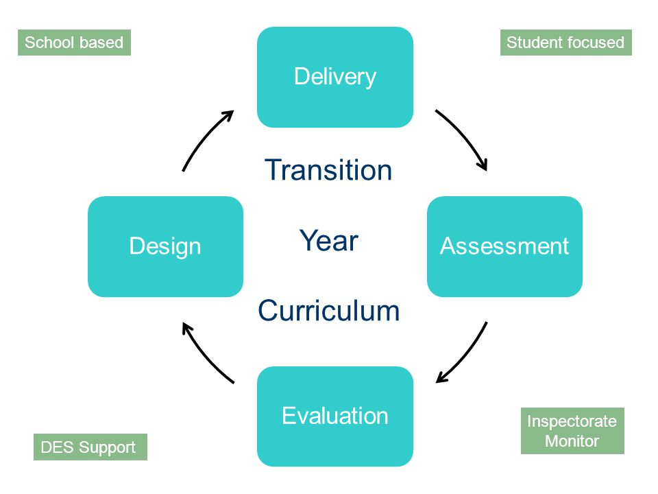 DeliveryAssessmentEvaluationDesign Transition Year Curriculum School based DES Support Inspectorate Monitor Student focused