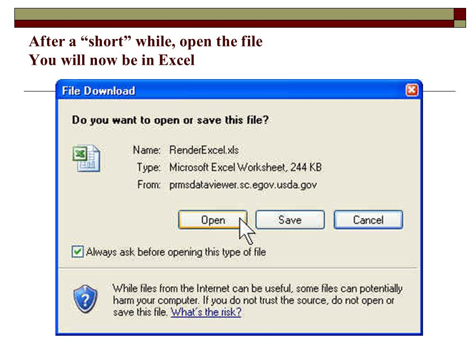 "After a ""short"" while, open the file You will now be in Excel"