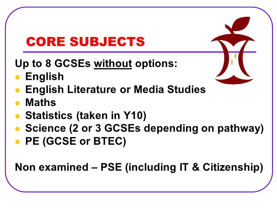CORE SUBJECTS Up to 8 GCSEs without options: English English Literature or Media Studies Maths Statistics (taken in Y10) Science (2 or 3 GCSEs depending on pathway) PE (GCSE or BTEC) Non examined – PSE (including IT & Citizenship)