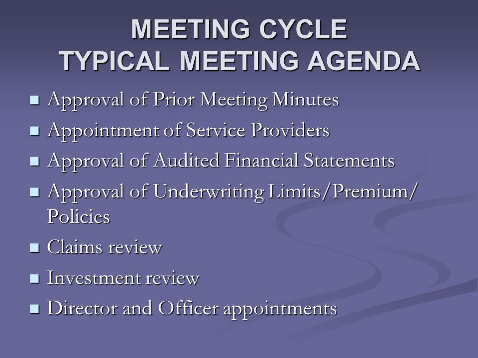 MEETING CYCLE TYPICAL MEETING AGENDA Approval of Prior Meeting Minutes Approval of Prior Meeting Minutes Appointment of Service Providers Appointment of Service Providers Approval of Audited Financial Statements Approval of Audited Financial Statements Approval of Underwriting Limits/Premium/ Policies Approval of Underwriting Limits/Premium/ Policies Claims review Claims review Investment review Investment review Director and Officer appointments Director and Officer appointments