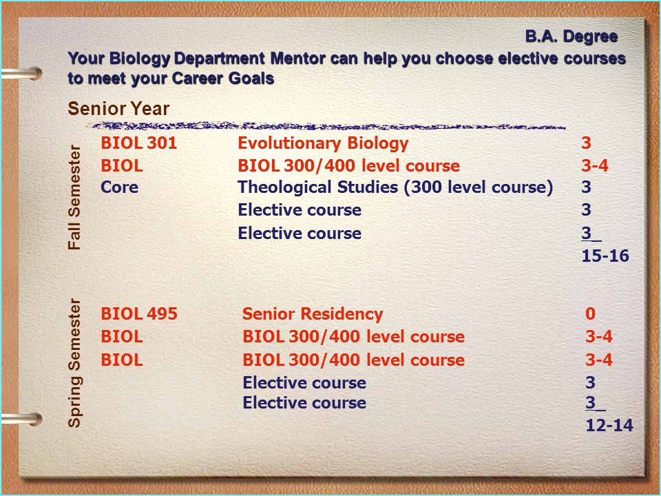 Senior Year BIOL 301Evolutionary Biology3 BIOLBIOL 300/400 level course3-4 CoreTheological Studies (300 level course)3 Elective course3 3_ 15-16 BIOL 495Senior Residency0 BIOLBIOL 300/400 level course3-4 BIOLBIOL 300/400 level course3-4 Elective course3 3_ 12-14 Fall Semester Spring Semester Your Biology Department Mentor can help you choose elective courses to meet your Career Goals B.A.