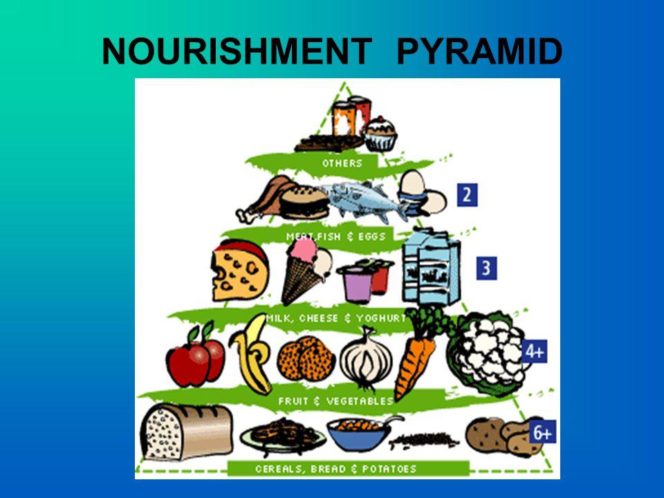NOURISHMENT PYRAMID