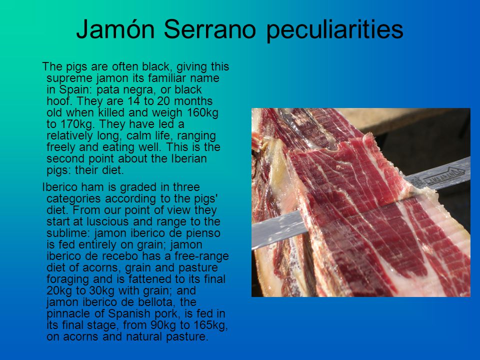 Jamón Serrano peculiarities The pigs are often black, giving this supreme jamon its familiar name in Spain: pata negra, or black hoof.