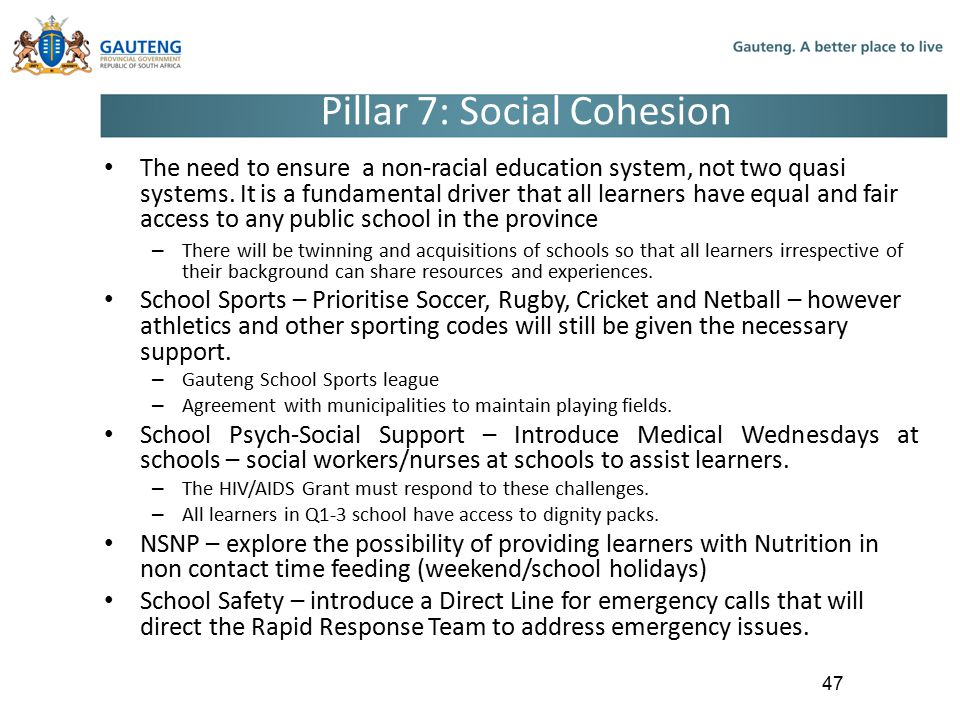 Pillar 7: Social Cohesion The need to ensure a non-racial education system, not two quasi systems.