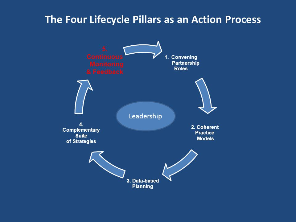The Four Lifecycle Pillars as an Action Process 1.