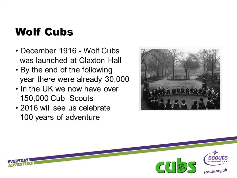 Wolf Cubs December 1916 - Wolf Cubs was launched at Claxton Hall By the end of the following year there were already 30,000 In the UK we now have over 150,000 Cub Scouts 2016 will see us celebrate 100 years of adventure
