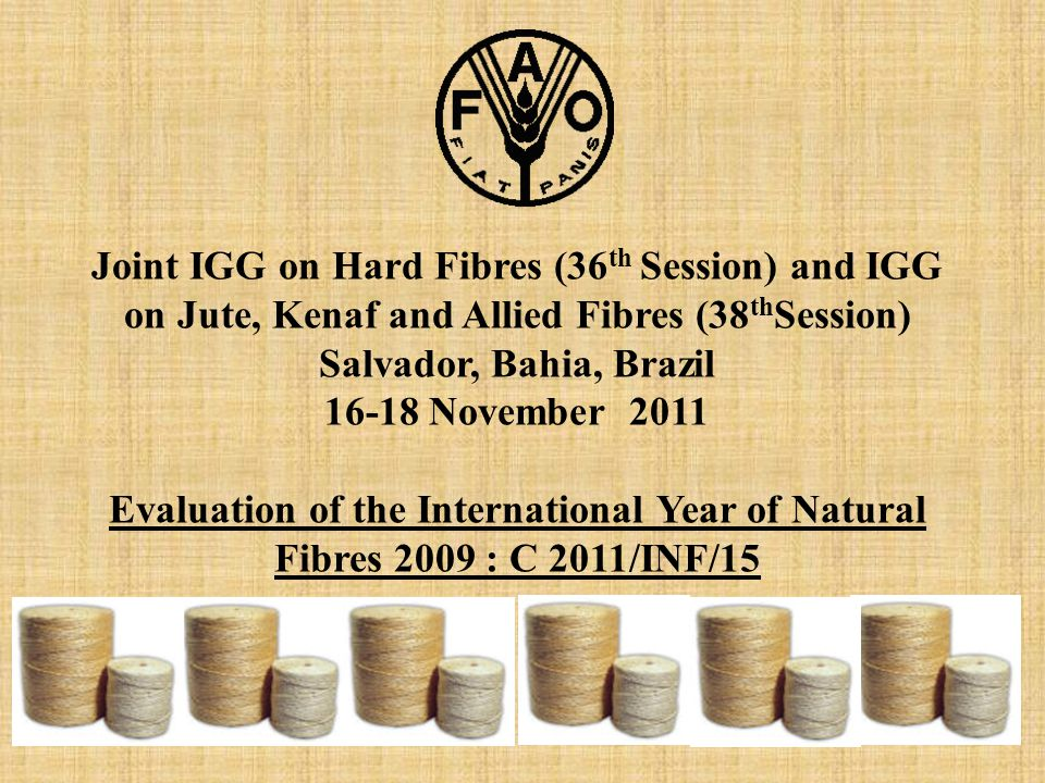 Joint IGG on Hard Fibres (36 th Session) and IGG on Jute, Kenaf and Allied Fibres (38 th Session) Salvador, Bahia, Brazil 16-18 November 2011 Evaluation of the International Year of Natural Fibres 2009 : C 2011/INF/15