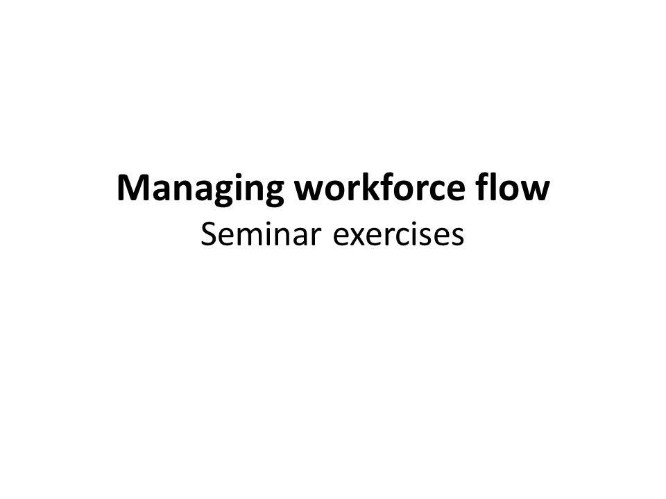 Managing workforce flow Seminar exercises