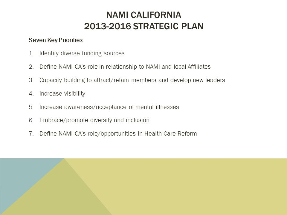 NAMI CALIFORNIA 2013-2016 STRATEGIC PLAN Seven Key Priorities 1.Identify diverse funding sources 2.Define NAMI CA's role in relationship to NAMI and local Affiliates 3.Capacity building to attract/retain members and develop new leaders 4.Increase visibility 5.Increase awareness/acceptance of mental illnesses 6.Embrace/promote diversity and inclusion 7.Define NAMI CA's role/opportunities in Health Care Reform