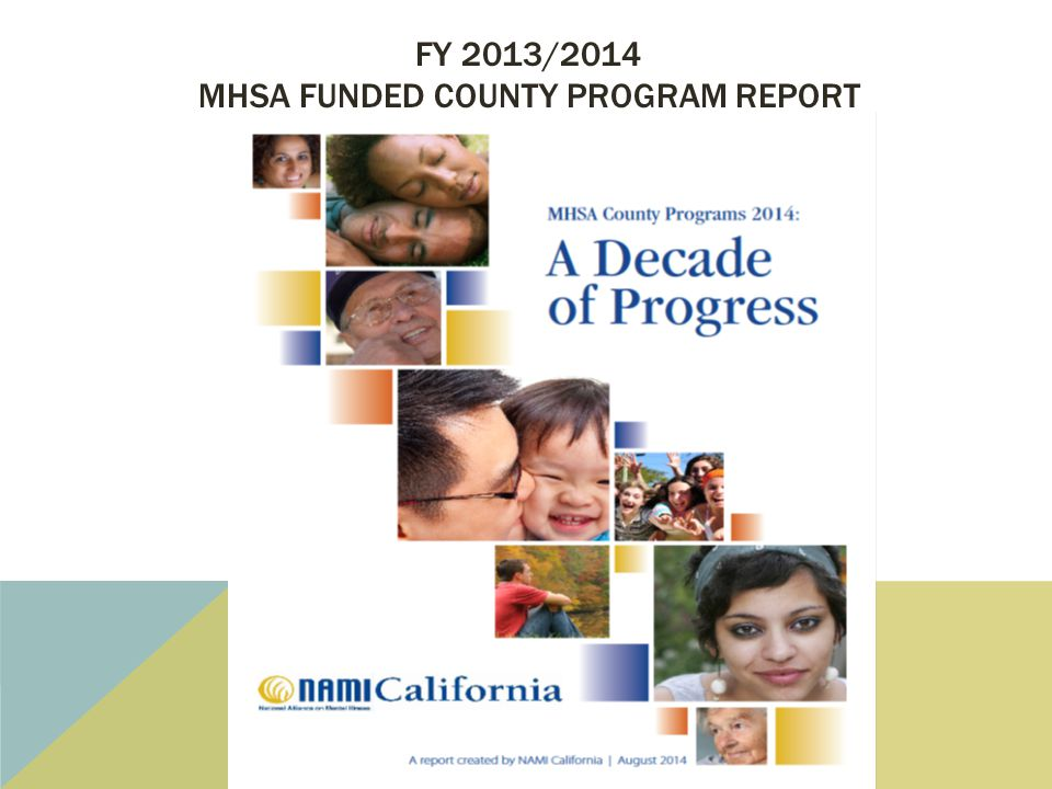 FY 2013/2014 MHSA FUNDED COUNTY PROGRAM REPORT