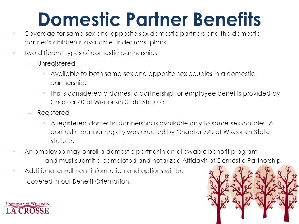 Domestic Partner Benefits Coverage for same-sex and opposite sex domestic partners and the domestic partner's children is available under most plans.