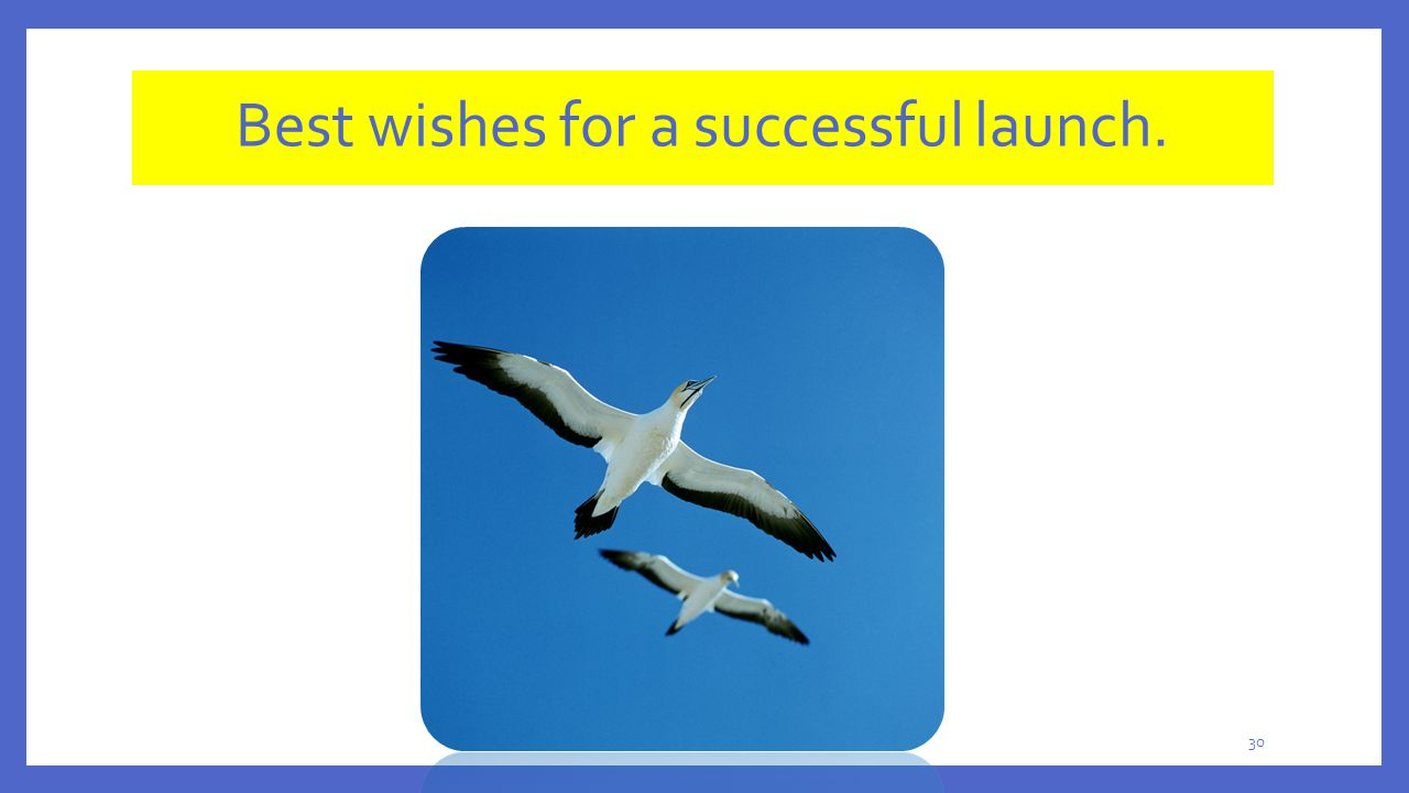30 Best wishes for a successful launch.