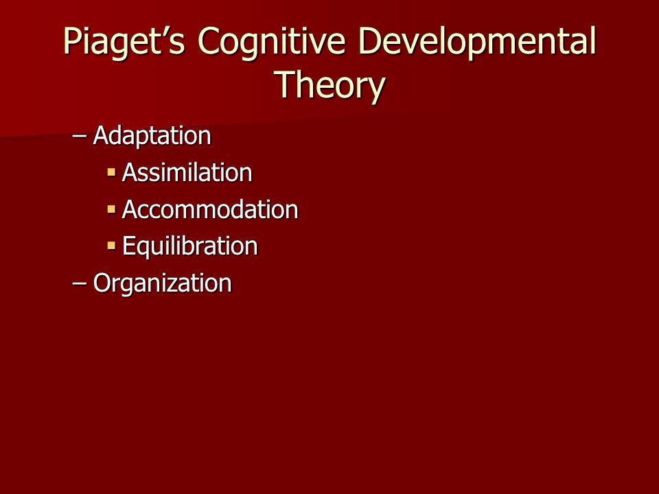 Piaget's Cognitive Developmental Theory –Adaptation  Assimilation  Accommodation  Equilibration –Organization