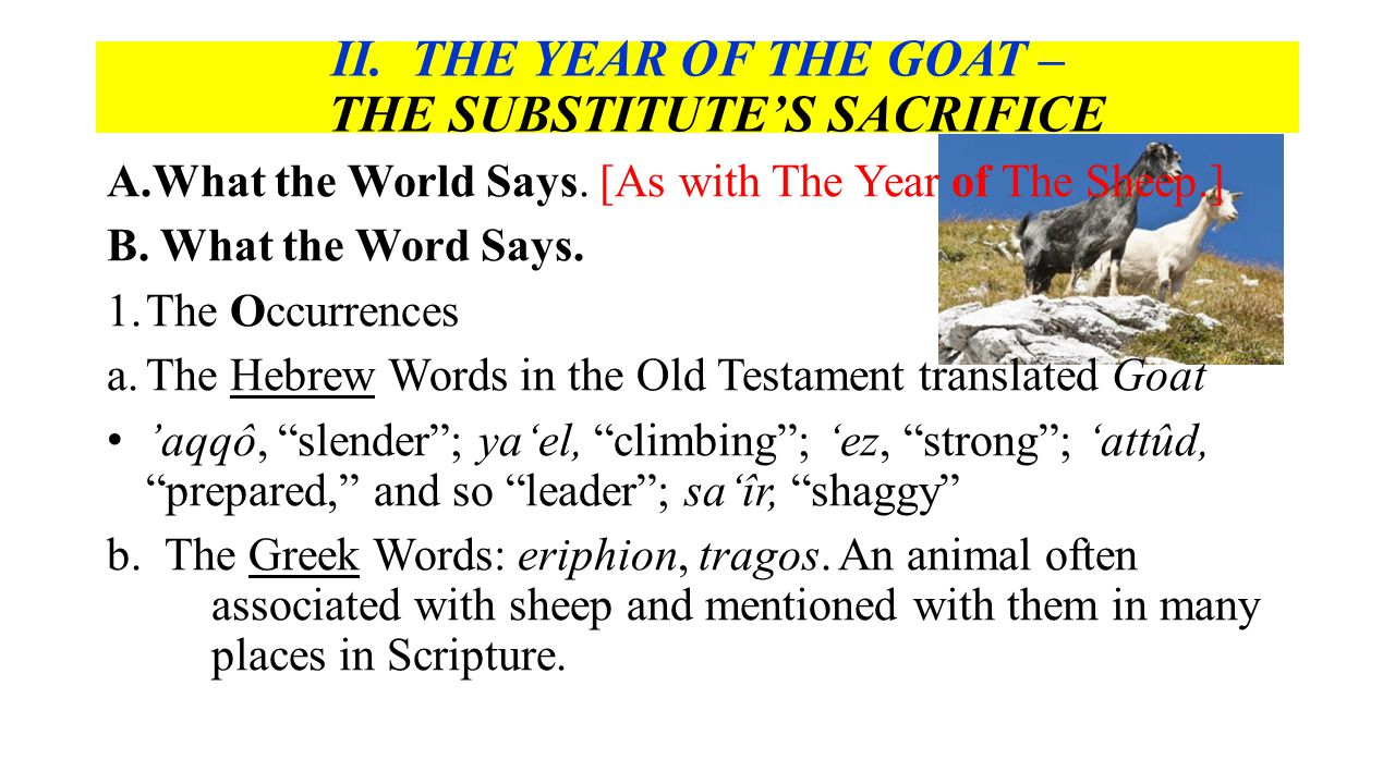 II. THE YEAR OF THE GOAT – THE SUBSTITUTE'S SACRIFICE A.What the World Says.