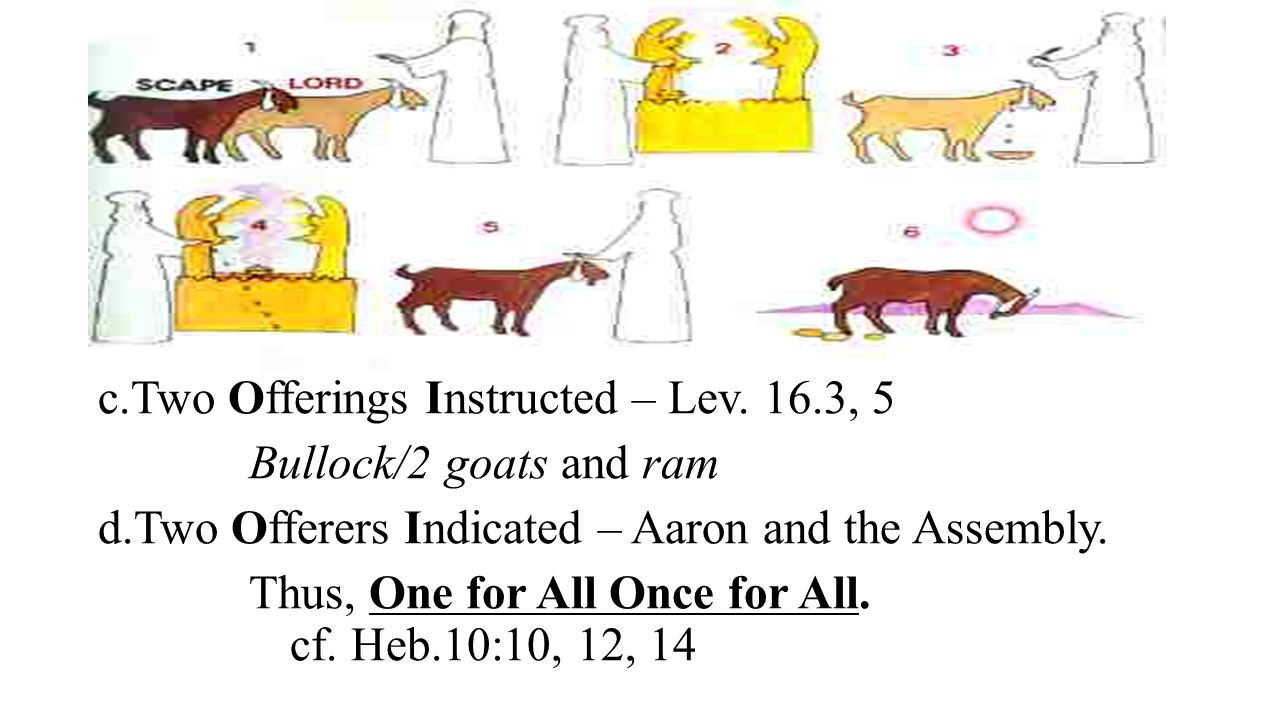 3. The Outstanding Goat/Goats in the Ritual on Atonement Day.