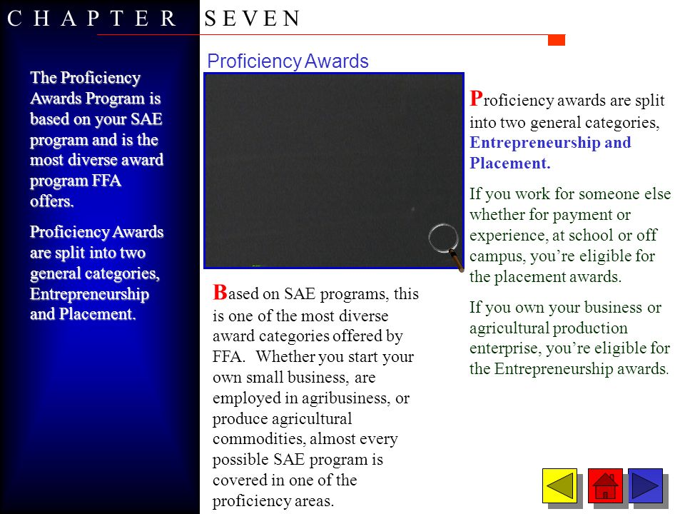 Proficiency Areas Your SAE program, and thus your proficiency award area, should reflect your occupational goals Your SAE program, and thus your proficiency award area, should reflect your occupational goals.
