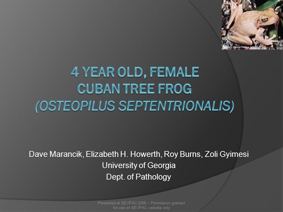 Dave Marancik, Elizabeth H. Howerth, Roy Burns, Zoli Gyimesi University of Georgia Dept. of Pathology Presented at SEVPAC 2008 – Permission granted fo