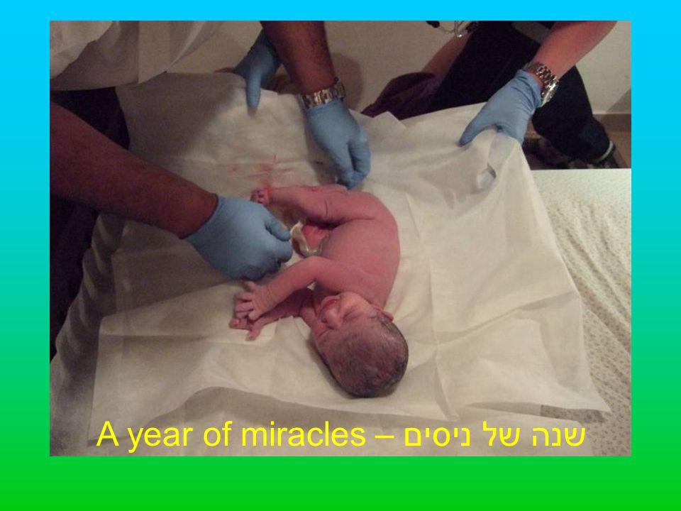 שנה של ניסים – A year of miracles