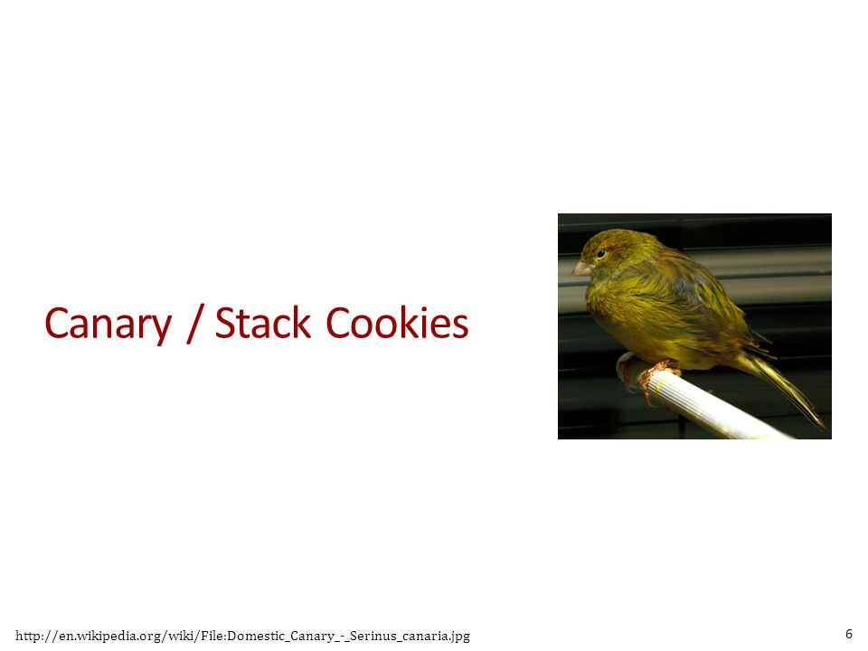Canary / Stack Cookies http://en.wikipedia.org/wiki/File:Domestic_Canary_-_Serinus_canaria.jpg 6
