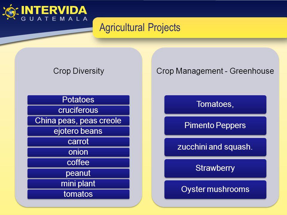 Agricultural Projects Crop Diversity PotatoescruciferousChina peas, peas creoleejotero beanscarrotonioncoffeepeanutmini planttomatos Crop Management -
