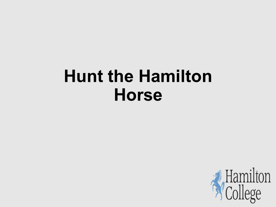 Hunt the Hamilton Horse