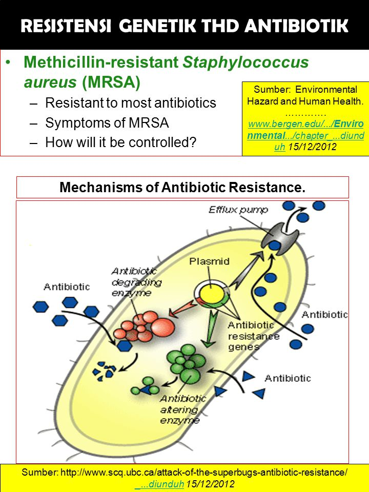 Methicillin-resistant Staphylococcus aureus (MRSA) –Resistant to most antibiotics –Symptoms of MRSA –How will it be controlled? Sumber: Environmental