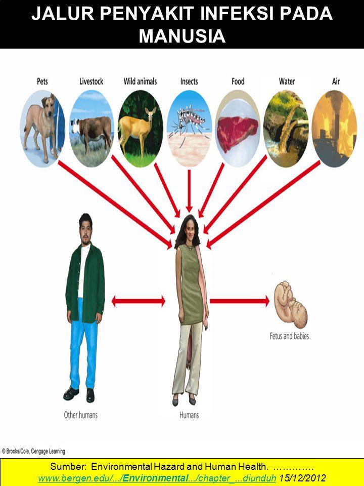 JALUR PENYAKIT INFEKSI PADA MANUSIA Sumber: Environmental Hazard and Human Health.