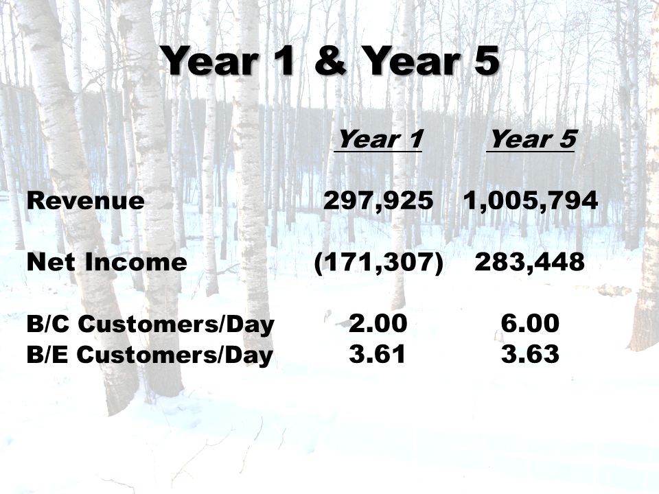 Year 1 & Year 5 Year 1Year 5 Revenue297,9251,005,794 Net Income (171,307)283,448 B/C Customers/Day 2.006.00 B/E Customers/Day 3.613.63