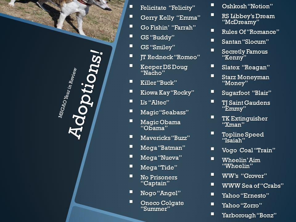 "Adoptions!  Oshkosh ""Notion""  RS Libbey's Dream ""McDreamy""  Rules Of ""Romance""  Santan ""Slocum""  Secretly Famous ""Kenny""  Slatex ""Reagan""  Star"