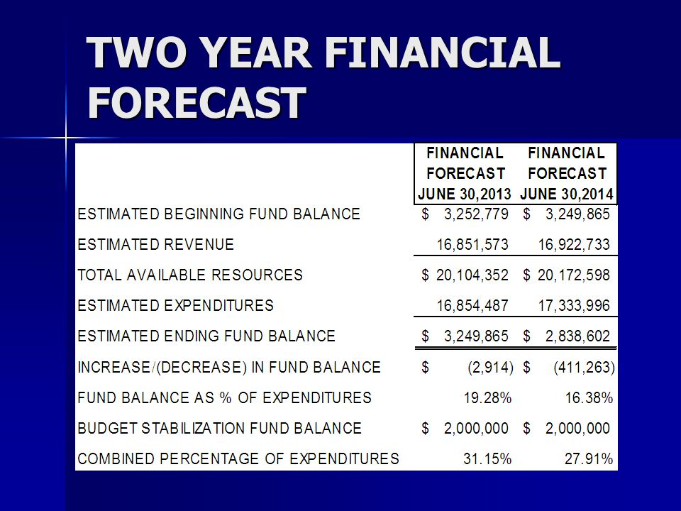 TWO YEAR FINANCIAL FORECAST