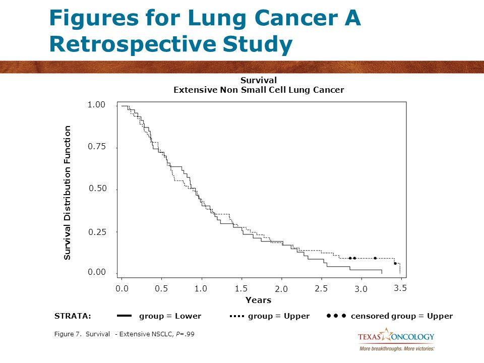 Figure 7. Survival - Extensive NSCLC, P=.99 Survival Extensive Non Small Cell Lung Cancer Years Survival Distribution Function STRATA:group = Lowergro