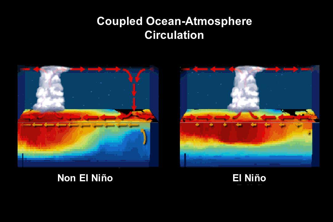 Non El NiñoEl Niño Coupled Ocean-Atmosphere Circulation