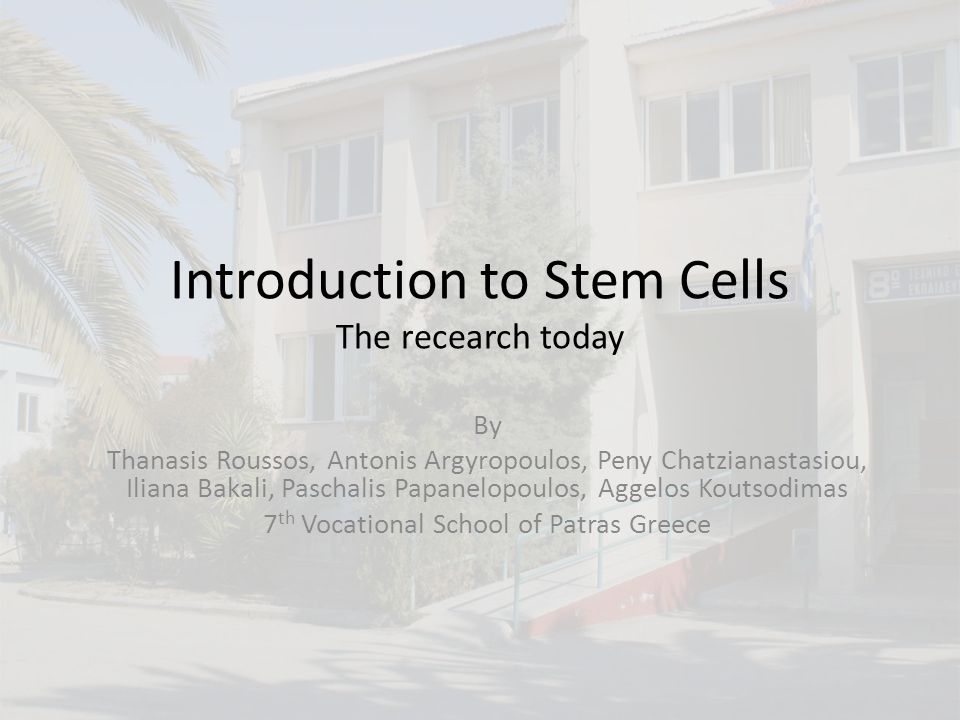 Embryonic Stem Cells (ESCs) are derived from the Inner Cell Mass (ICM) of the blastocyst Thanasis Roussos, Antonis Argyropoulos,, Peny Chatzianastasiou, Liana Bakali, Paschalis Papanelopoulos, Aggelos Koutsodimas 12