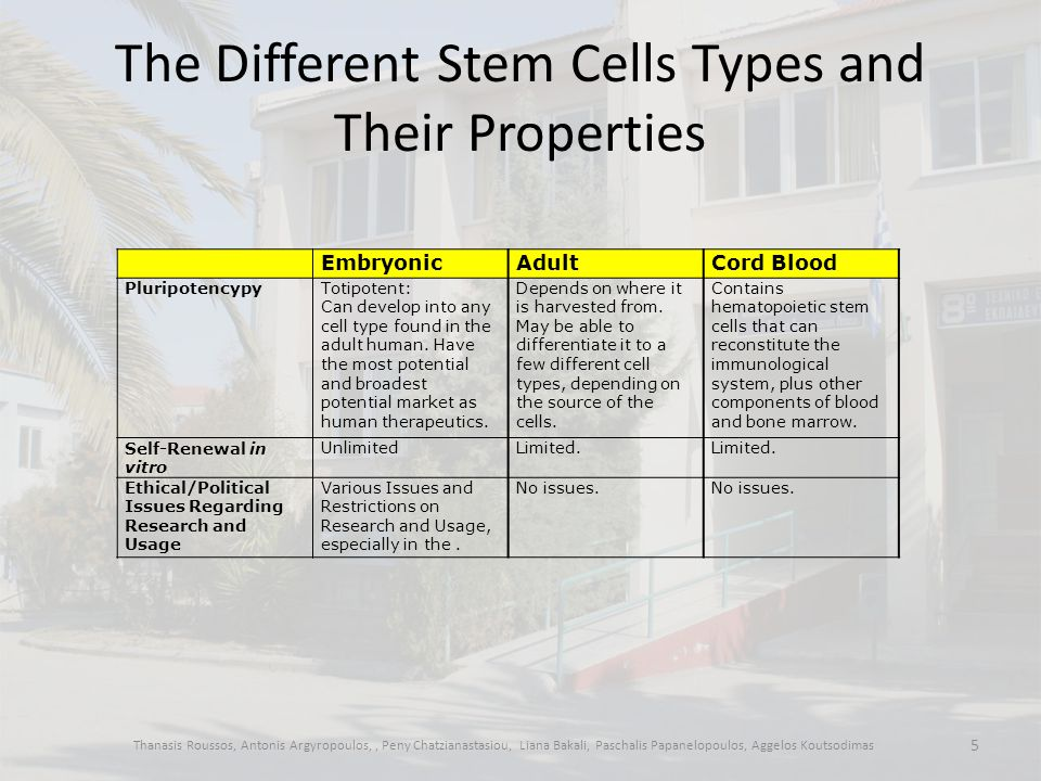 Why is stem cell research controversial.