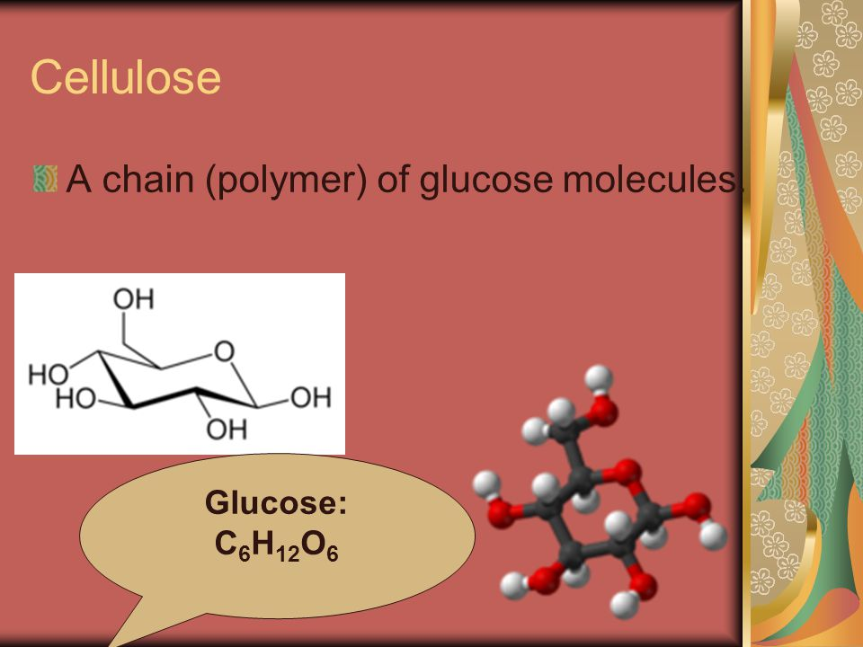 Cellulose A chain (polymer) of glucose molecules. Glucose: C 6 H 12 O 6
