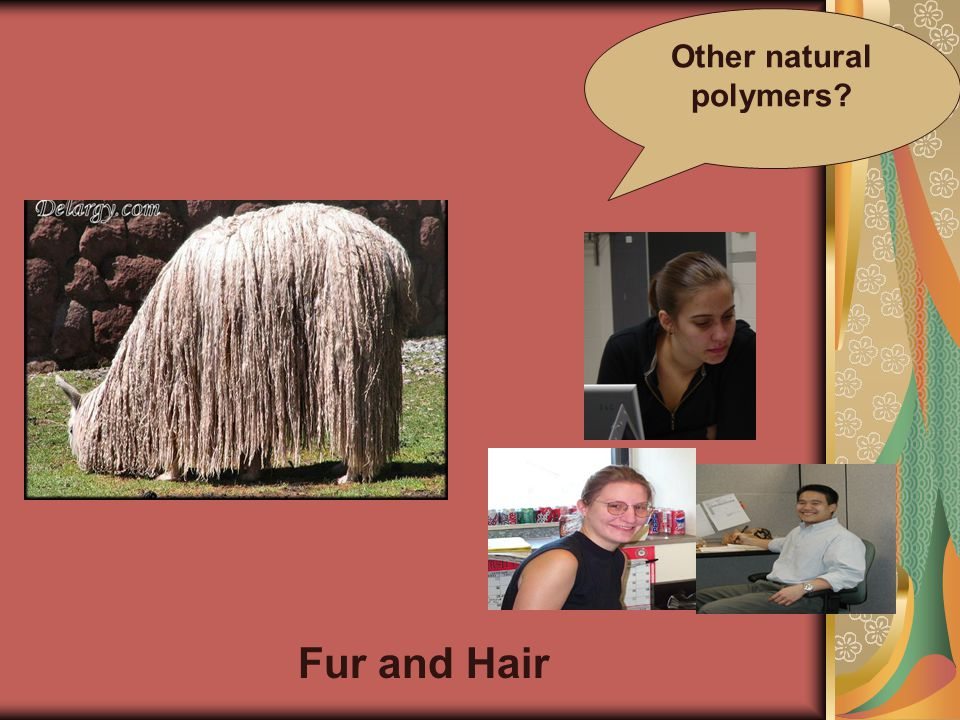 Other natural polymers Fur and Hair