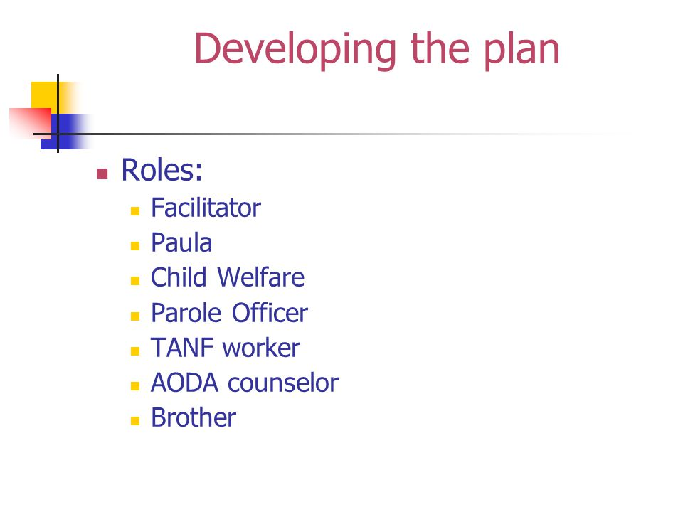 Developing the plan Roles: Facilitator Paula Child Welfare Parole Officer TANF worker AODA counselor Brother