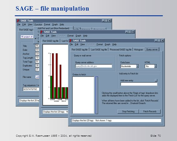 Copyright S.W. Rasmussen 1995 – 2004, all rights reserved Slide 70 SAGE – file manipulation